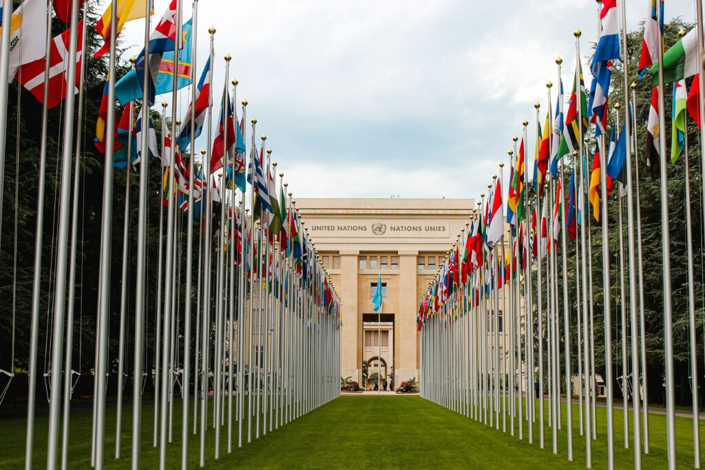 United Nations: The World Will Grow Rapidly in 2021